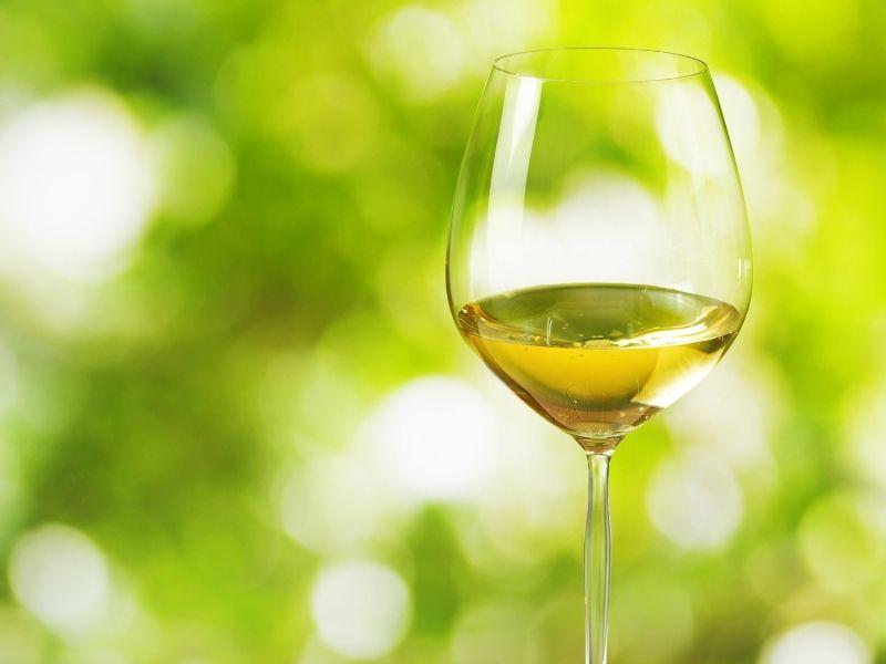 Bijelo vino grozdje