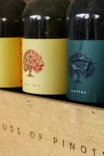 tilia-vinarija