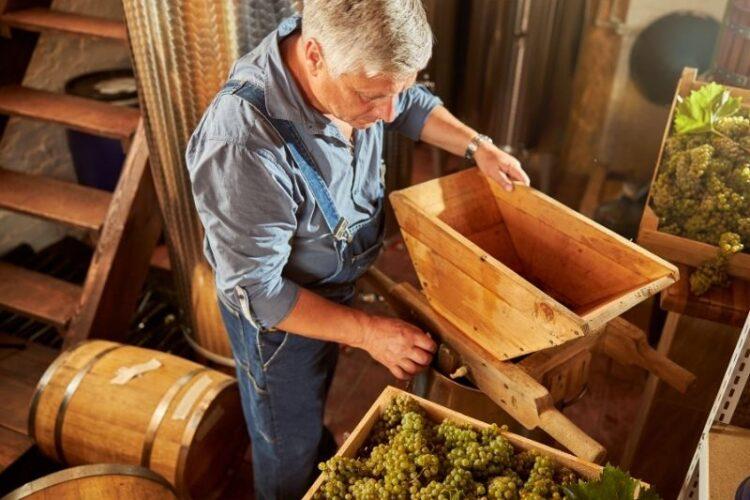 Vinarija i vinar